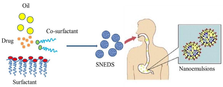 Quercetin Nanoemulsion